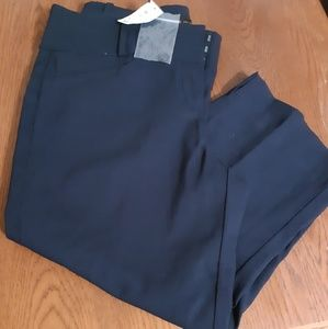 NWT Women The Limited exact navy blue crop jeans